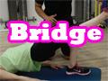 6 Ways to Bridge: Beginner to Advanced